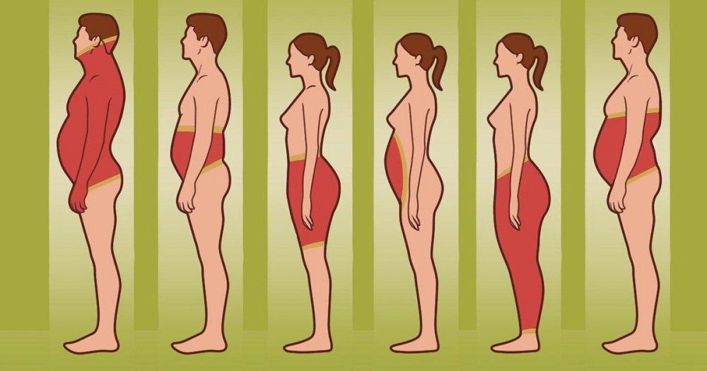 Que révèle l'emplacement de votre graisse corporelle sur vous ? Et que devez-vous faire pour vous en débarrasser ?
