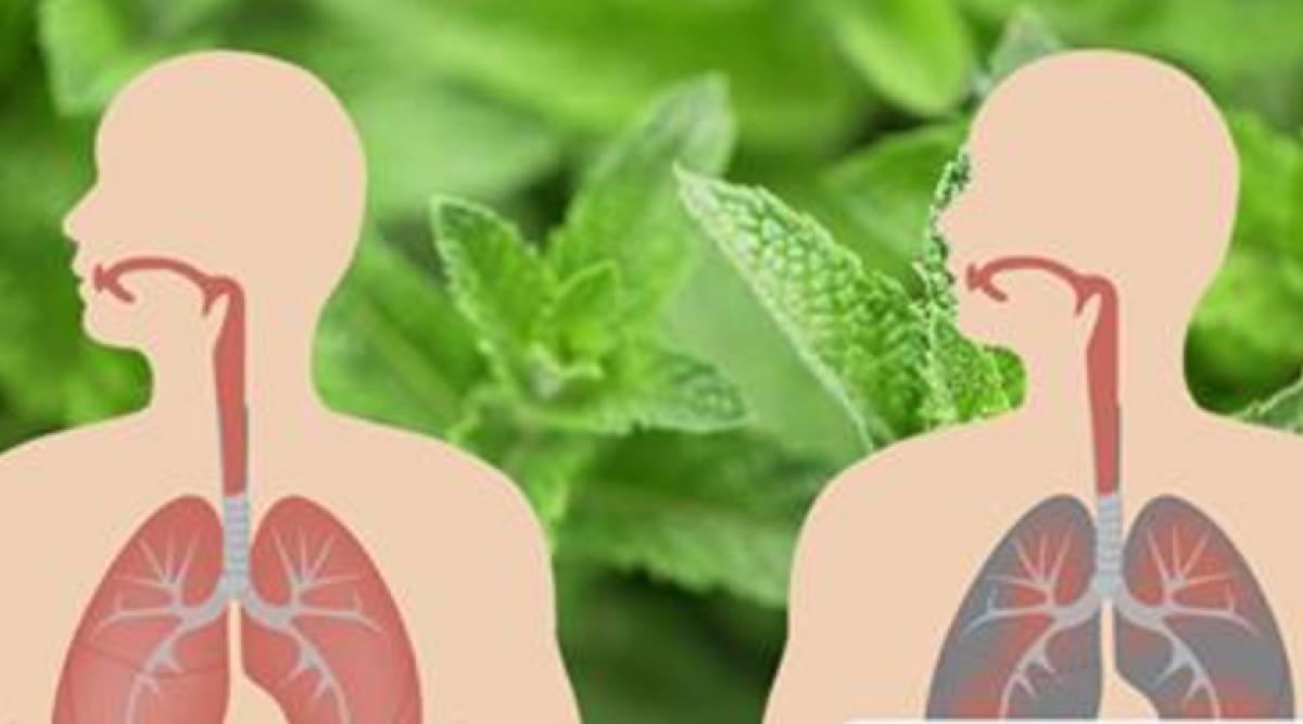 Voici comment éliminer le mucus et combattre les infections pulmonaires naturellement