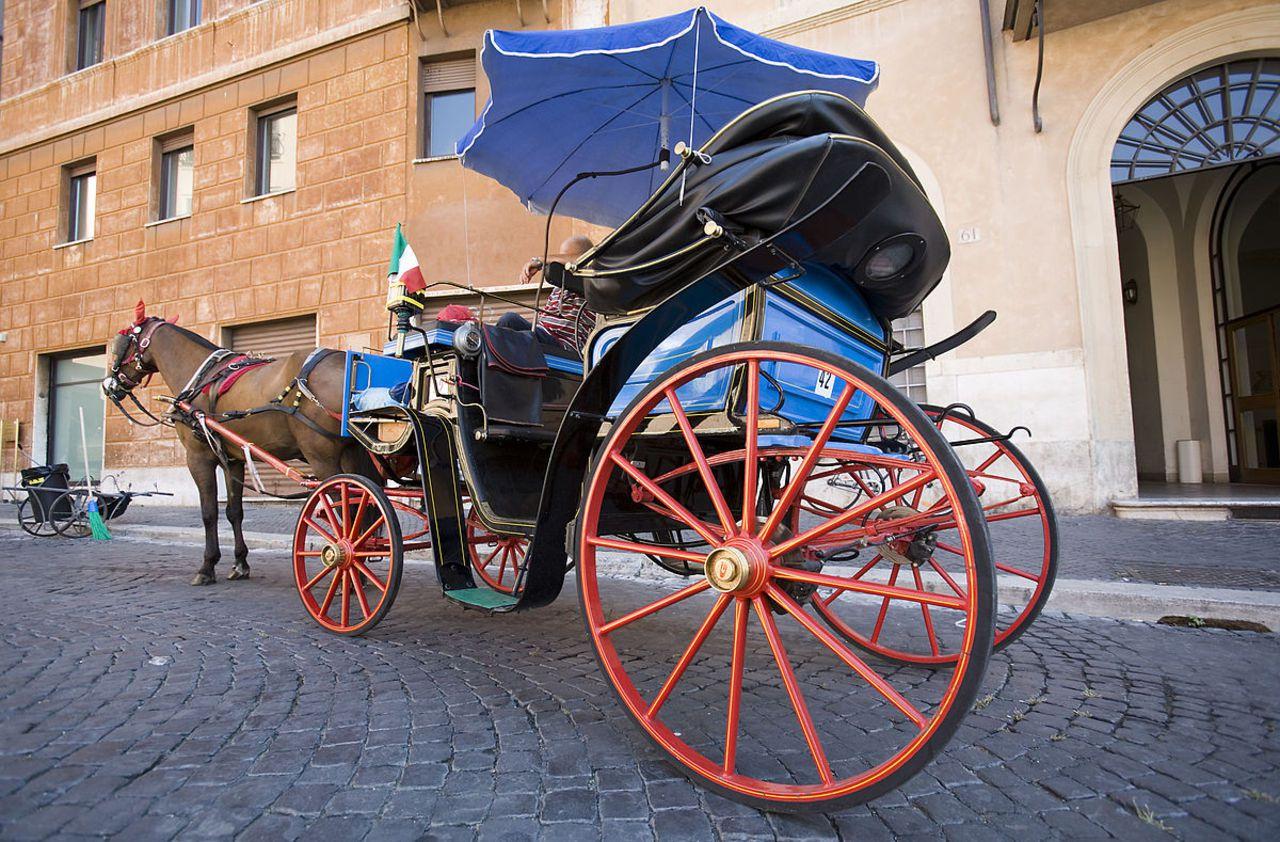Italie : un cheval meurt alors qu'il promène des touristes sous 36 degrés