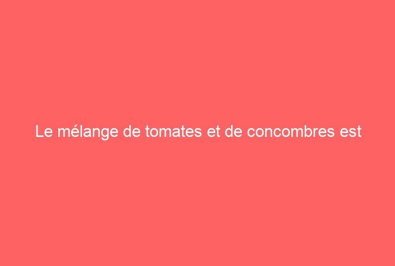 Le mélange de tomates et de concombres est interdit par les médecins: voici pourquoi
